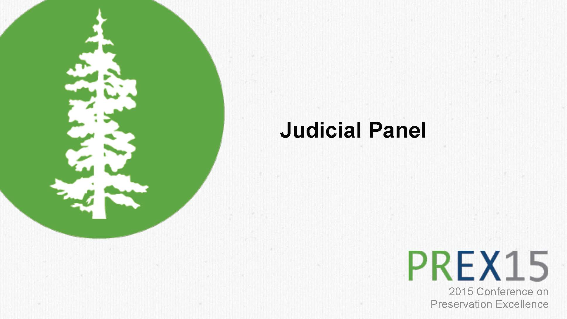 Session 10: Judicial Panel